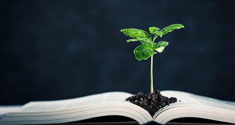 Livro e planta representando licenciamento ambiental na construcao civil